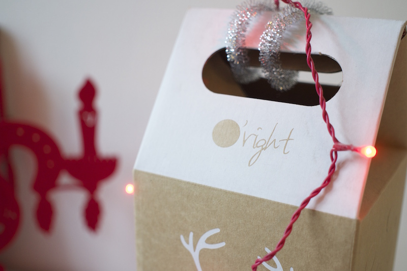 ORight Gewinnspiel Weihnachten Giveaway Shampoo Hair Oil Sophiehearts2