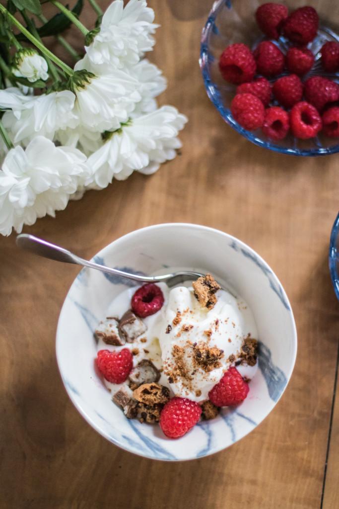 Selbstgemachtes Frozen Yoghurt Rezept Sophiehearts Foodblog Fashionblog Lifestyleblog Wien Vienna (6 von 8)